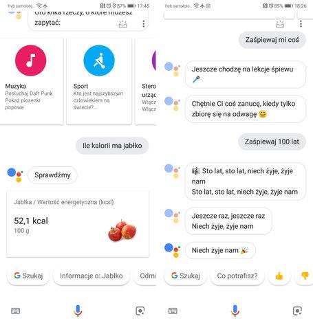 Asystent Google Po Polsku Już U Pierwszych Użytkowników Jak Włączyć